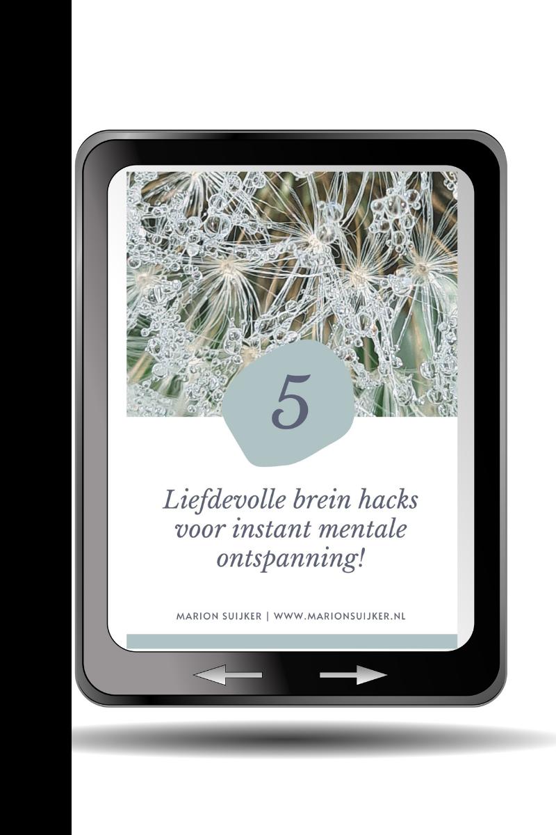 Ebook Brein hacks